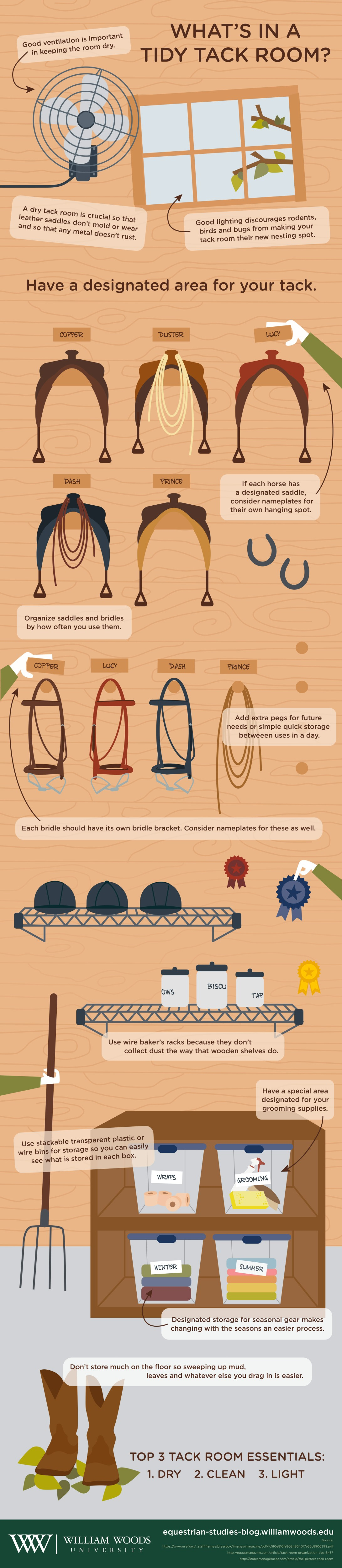equestrian.studies.infographic